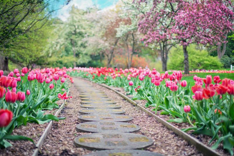 5 tips voor minimaal tuinonderhoud (deel 2)